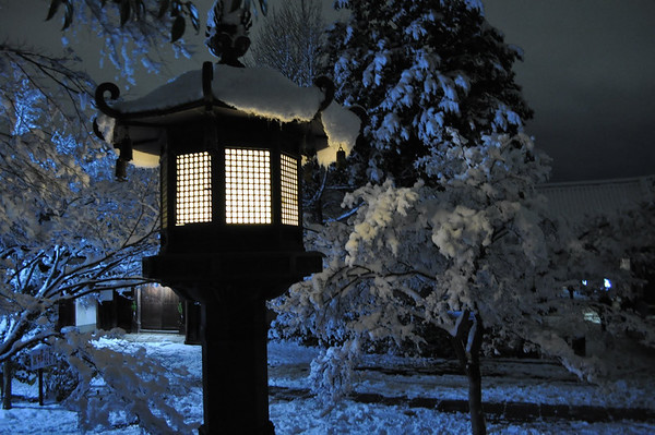 Shinyodo Lanterns