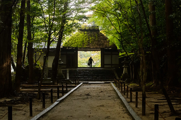Honen-in Temple gate in the afternoon image copyright Jeffrey Friedl