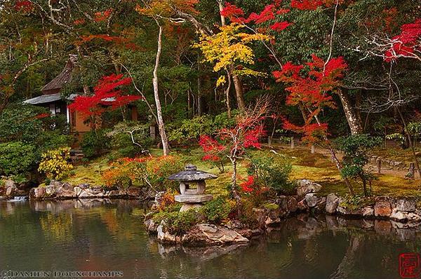 Isui-en Gardens, Nara - image copyright Damien Douxchamps