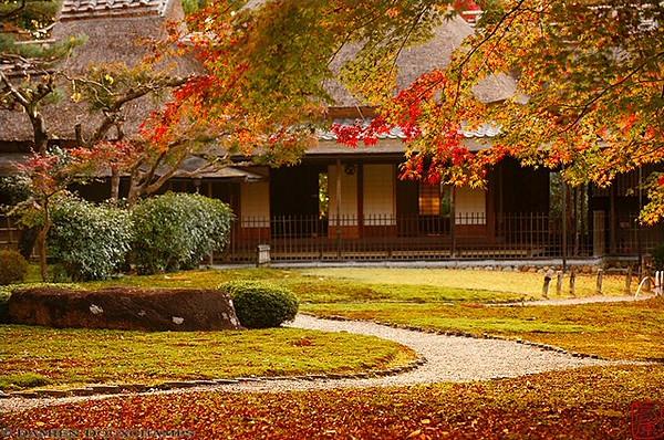 Tea House, Yoshiki-en Gardens, Nara - image copyright Damien Douxchamps