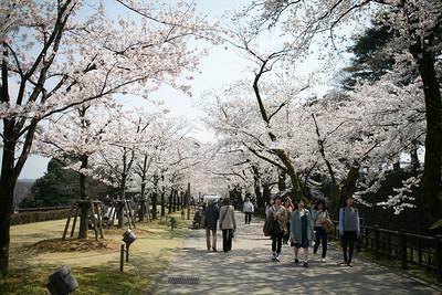 Best Time To Go To Kanazawa, image copyright norio-nakayama