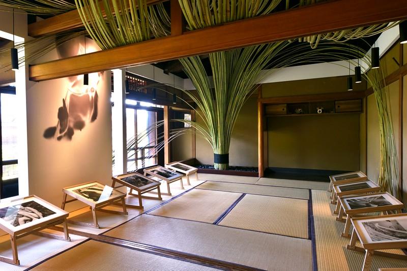 Kyoto Graphie