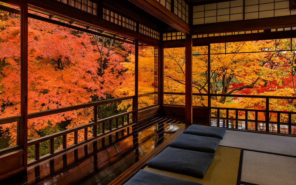 Fall colors from inside Ruriko-in Temple image copyright Jeffrey Friedl