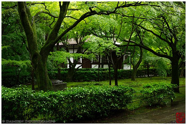 Shinyo-do Temple with new green image copyright Damien Douxchamps