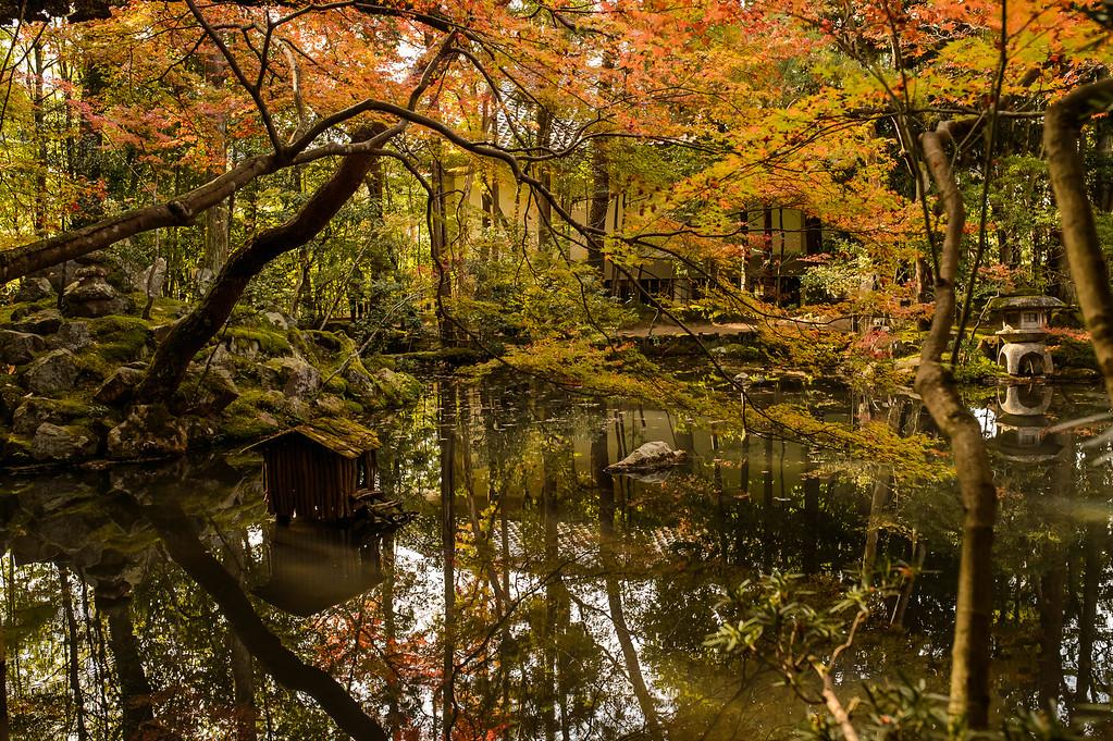 Pond at Tenju-an Temple image copyright Jeffrey Friedl