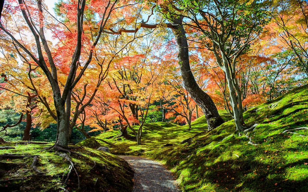 Sento Gosho Imperial Palace image copyright Jeffrey Friedl
