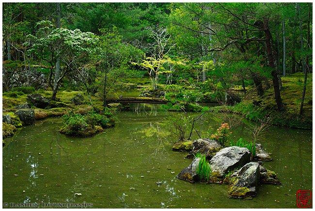 Koke-dera/Saiho-ji (Moss Temple) garden image copyright Damien Douxchamps