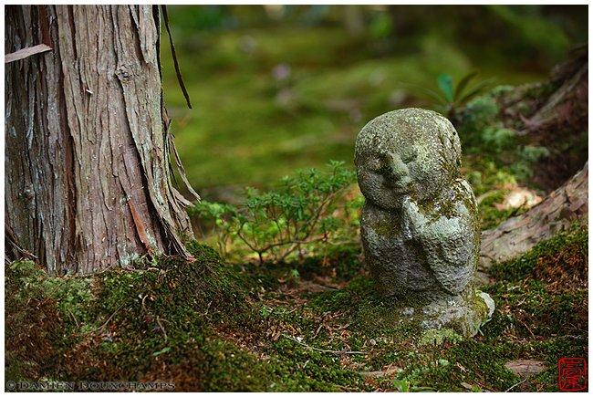 Jizo figure in the moss at Ohara's Sanzen-in Temple image copyright Damien Douxchamps