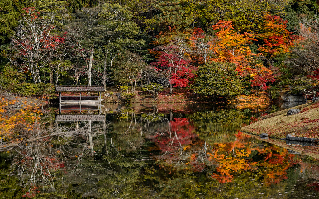 Pond at Shugakuin Rikyu Imperial Villa image copyright Jeffrey Friedl