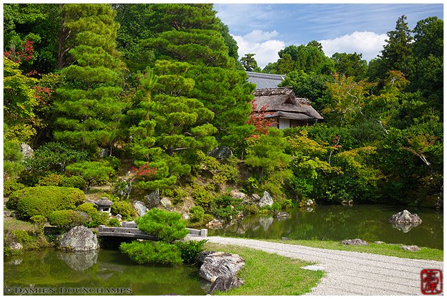 Ninna-ji Temple garden image copyright Damien Douxchamps