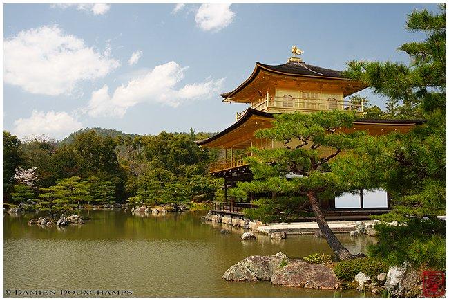 Kinkaku-ji Temple main hall and pond image copyright Damien Douxchamps