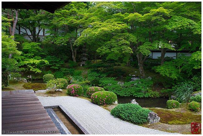 Sennyu-ji Temple garden with summer green image copyright Damien Douxchamps