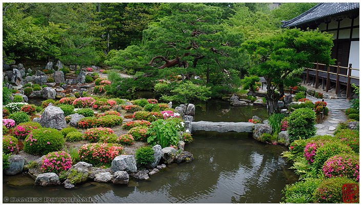 Toji-in Garden in spring image copyright Damien Douxchamps