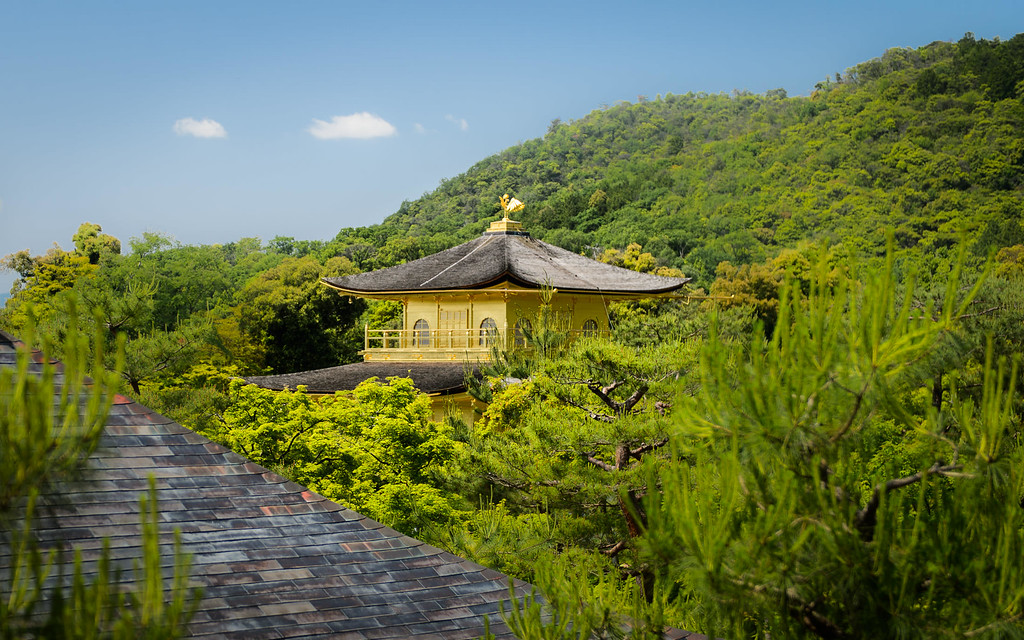 Kinkaku-ji Temple peeking out of the green image copyright Jeffrey Friedl