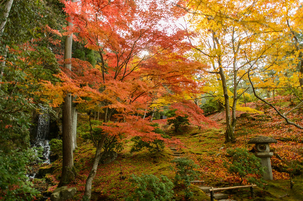 Fall foliage at Shugakuin Rikyu Imperial Villa image copyright Jeffrey Friedl