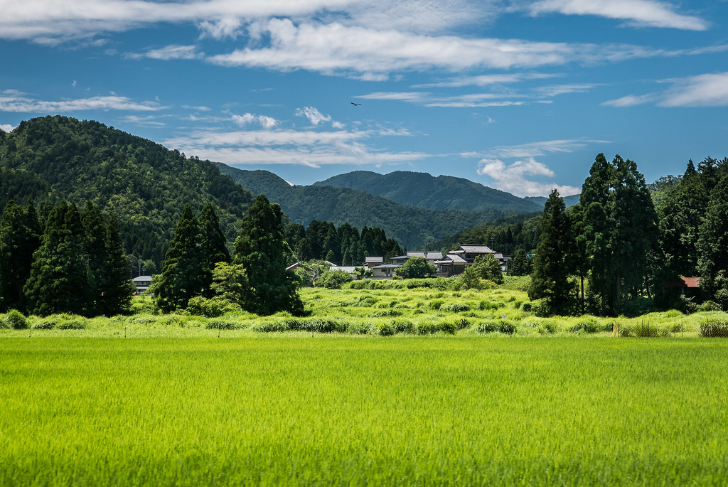 Mountains north of Kyoto image copyright Jeffrey Friedl