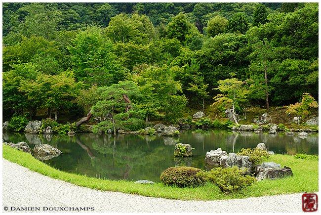 Tenryu-ji Temple garden in spring image copyright Damien Douxchamps