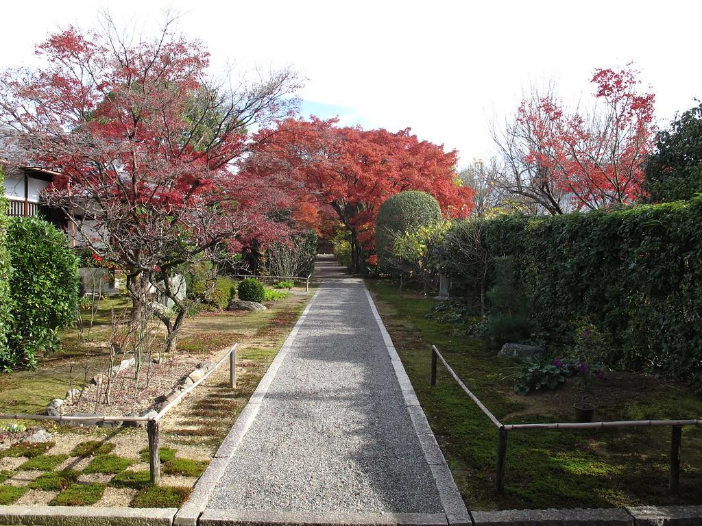 A closer view of Daitsuu-in