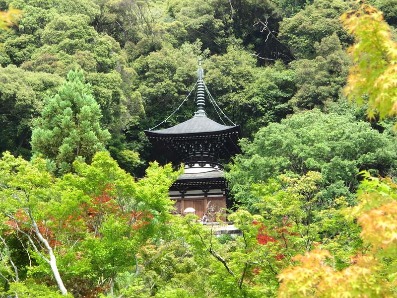 Eikan-do's pagoda