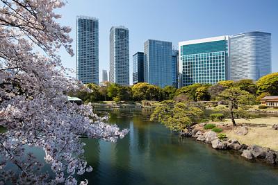 Tokyo Itineraries